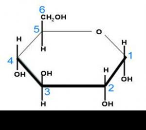 b)Glucosa